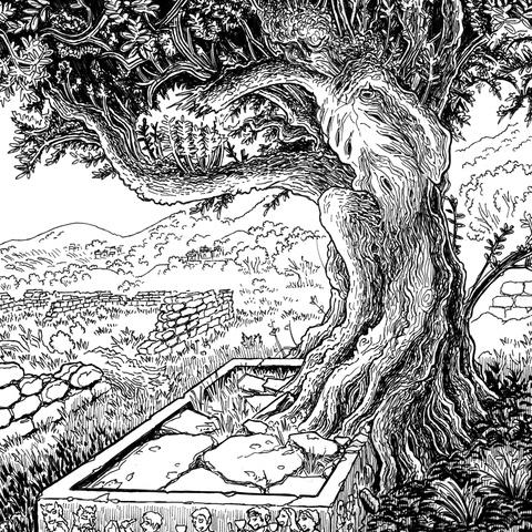 The Tree by Jason Thompson
