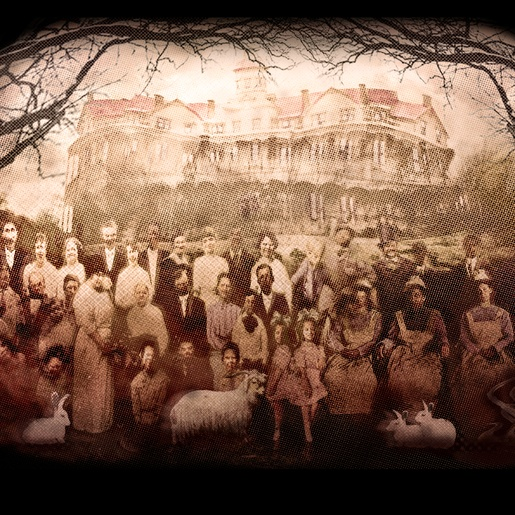 Insane Asylum by John D. Chadwick