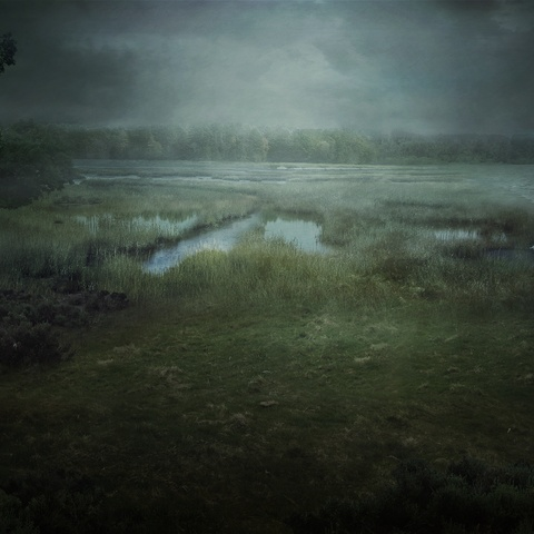 The Salt Marsh by Mihail Bila