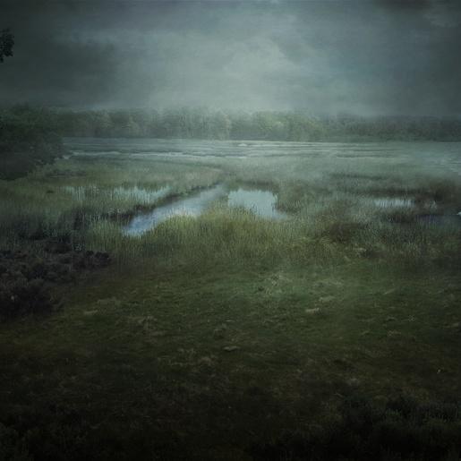 The Salt Marsh by Mihail Bila